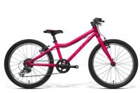 "AMULET Tomcat 20"" 2021, dark pink metalic/violet shiny"